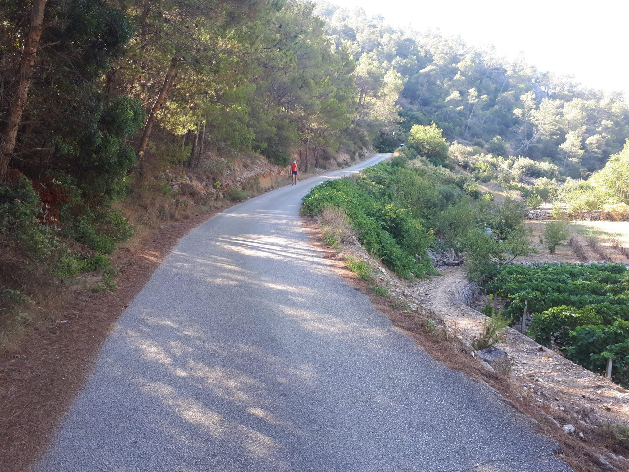 Road to village1